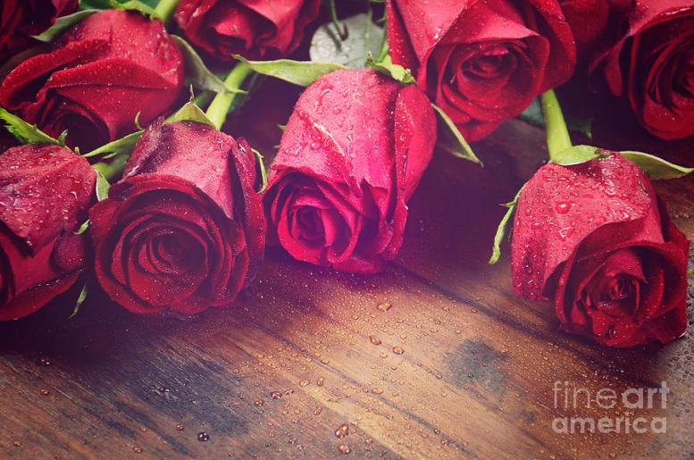 red-roses-on-dark-recycled-wood-background-milleflore-images